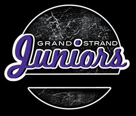 2013-GSJ-Logo